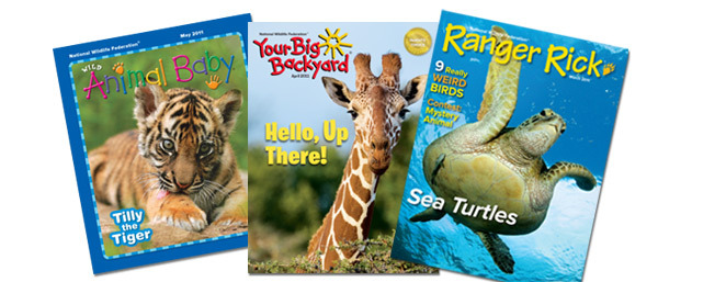 Get a Kids' Wildlife Magazine Subscription for 1 Year for $10